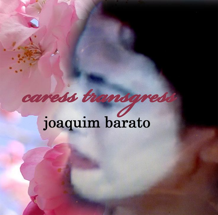 Album Review: Joaquim Barato - Caress Transgress