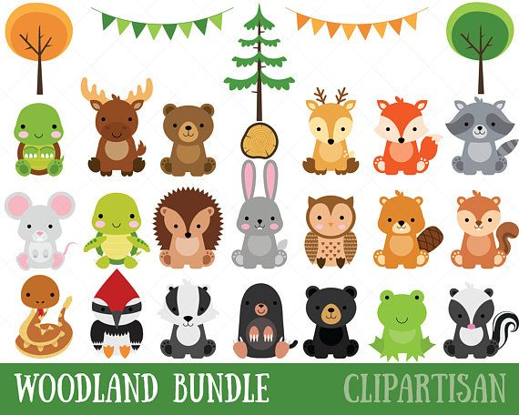 Woodland Baby Animals Clipart Forest Animal Clipart Etsy Animal Clipart Woodland Clipart Baby Animal Invitations