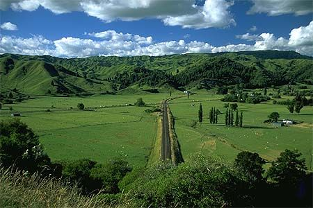 The Rangitikei is a rural area located in the southern half of New Zealand's North Island.
