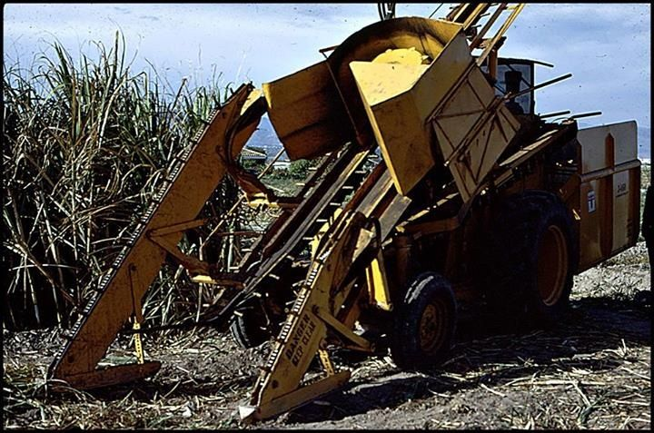 Cameco Sugar Cane Harvester : Best images about cane harvesters on pinterest