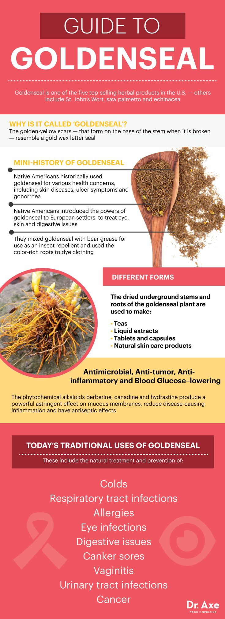 Guide To Goldenseal: A Natural Antibiotic and Cancer Fighter