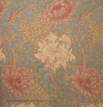 William Morris Chrysanthemum Tapet