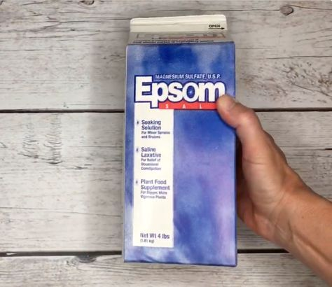 Epsom Salt for Your Plants - Inside and Out  This brilliant gardener pours dish soap into Epsom salt for an easy healthy plant hack