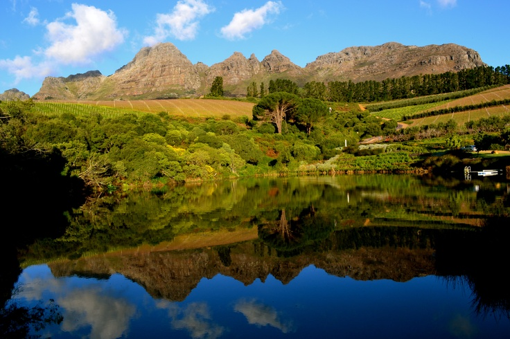 Stellenbosch's Hidden Valley #travel #wine #SouthAfrica