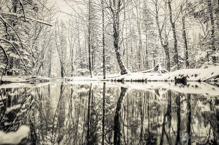 Winter's Lines. Cape Breton