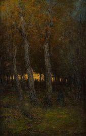 Západ slnka vlese