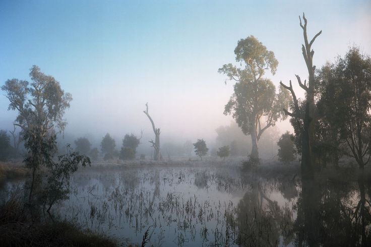Tumut Wetlands - Jamie Hladky, curated by Christophe on Buamai.