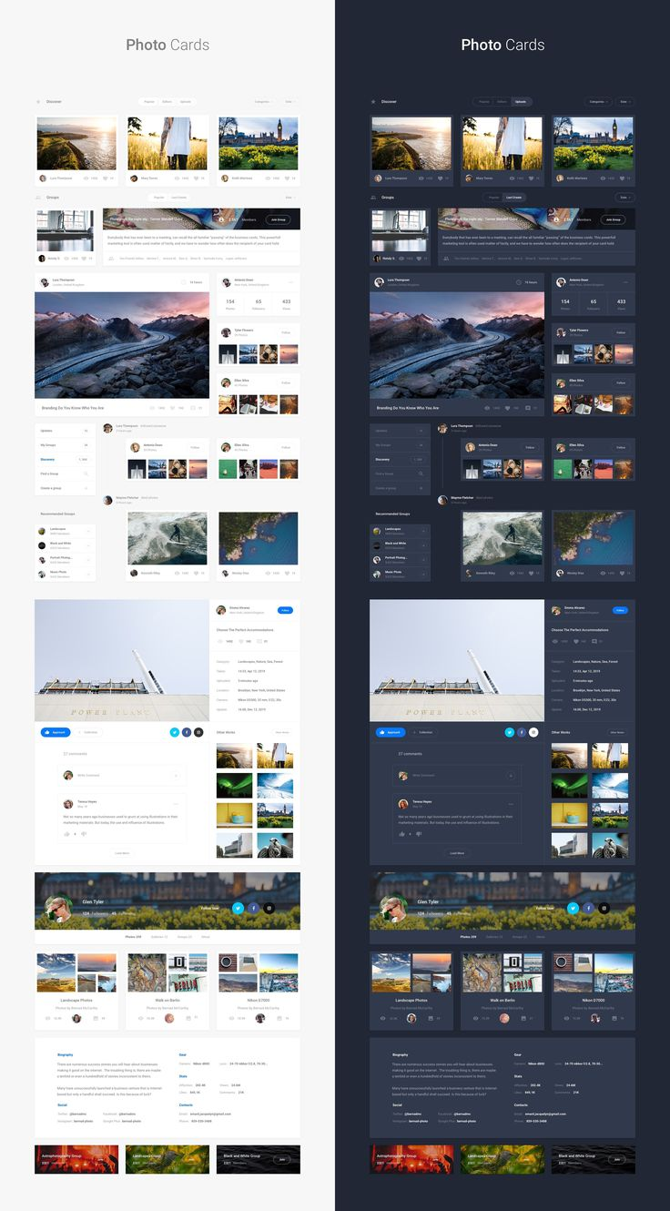 Web Interface, 300+ Card, 100+ Page by Spline on @creativemarket