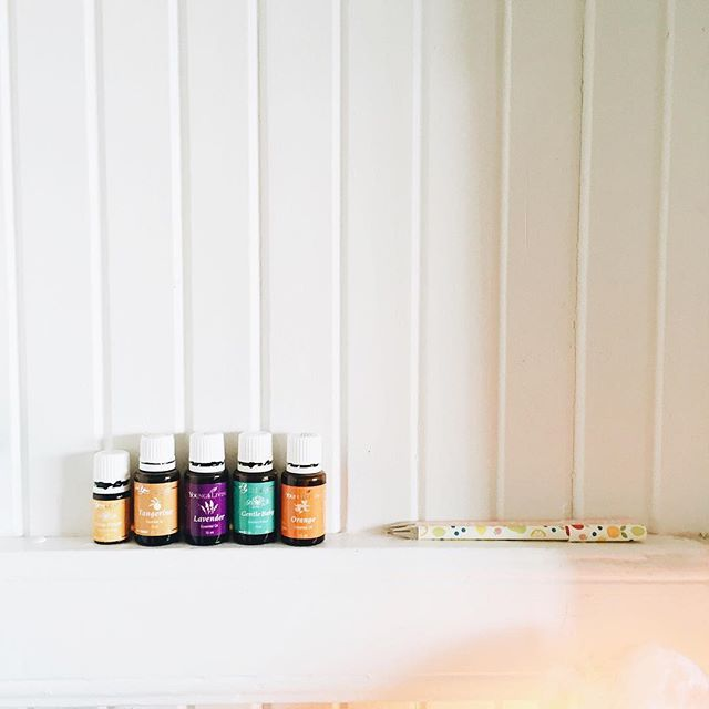 Happy little oils sitting in our kitchen 😍  Our oils move constantly throughout our house. We have a big cabinet full of them in my office (which is where the majority of them are). Just this morning I've seen peppermint on my bedside table, deep relief on my husbands bedside table, purification on the bathroom sink, lavender in Alice's room, peace and calming in the lounge and these little ones in the kitchen! 💚❤️💙💜 It's like oily musical chairs 😂