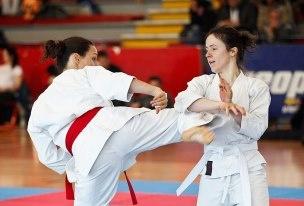 Dangerous kick - Makotokai Karatedo