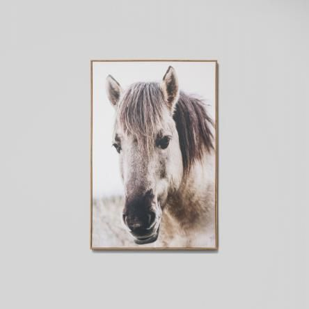 Country Mare | Framed Canvas Print