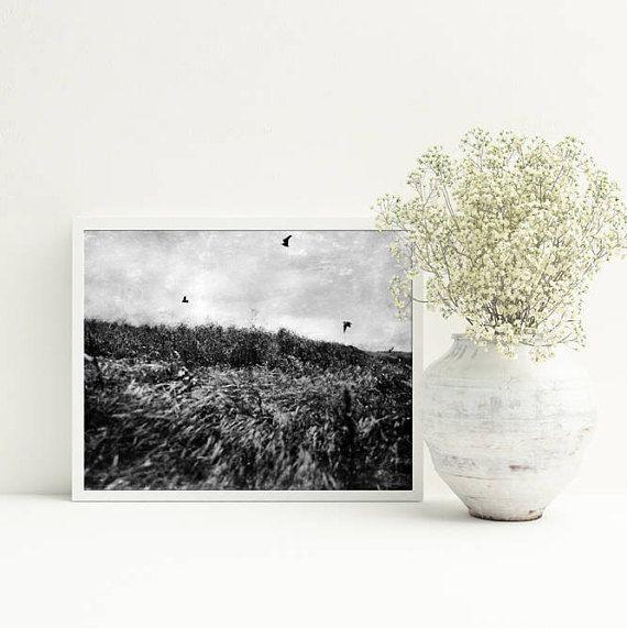 A2 PRINTABLE photography black and white landscape landscape