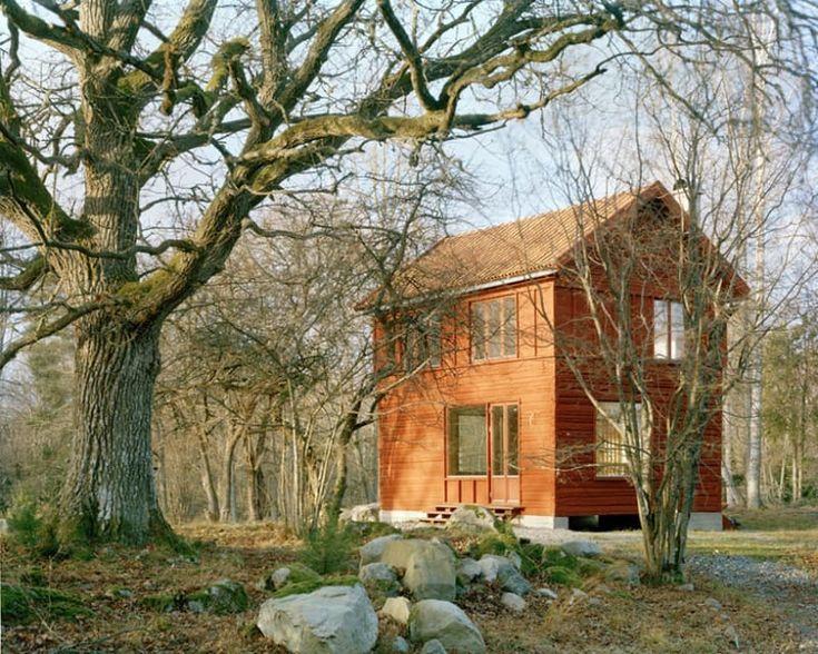 Красный дом отлично вписался в природный ландшафт участка.  (скандинавский,скандинавский интерьер,скандинавский стиль,деревенский,сельский,кантри,архитектура,дизайн,экстерьер,интерьер,дизайн интерьера,мебель,маленький дом,фасад) .