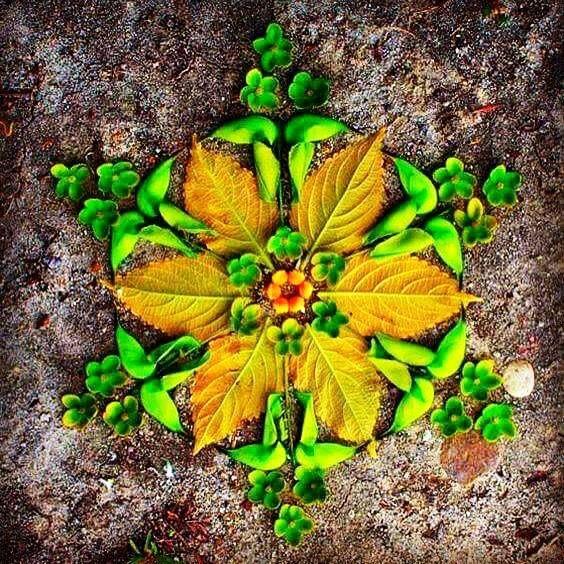 Mandala De Flores e folhas  By Marta Campelo