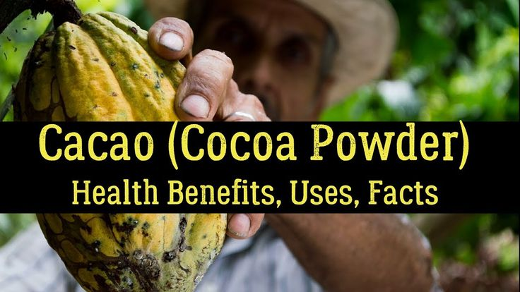 Cacao (Cocoa Powder) - Health Benefits, Uses, Facts