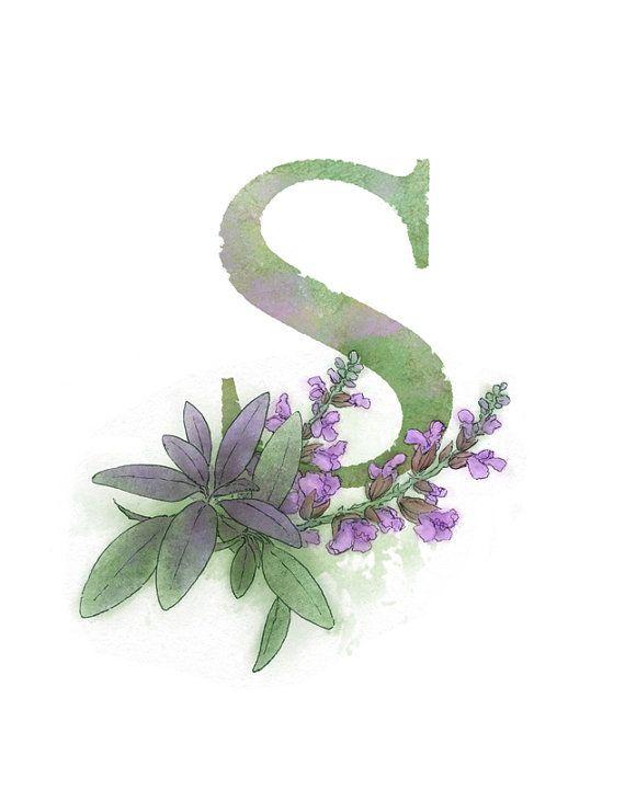 Letter S Art Print, Sage, Nature Theme Alphabet Art, Nursery Giclee Print