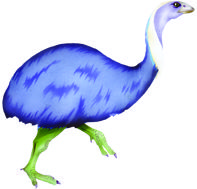 The extinct Little Bush Moa. In CLOAK OF PROTECTION is eaten by hokioi / Haast's eagle, dog, Forbes Harrier, and the human hunter