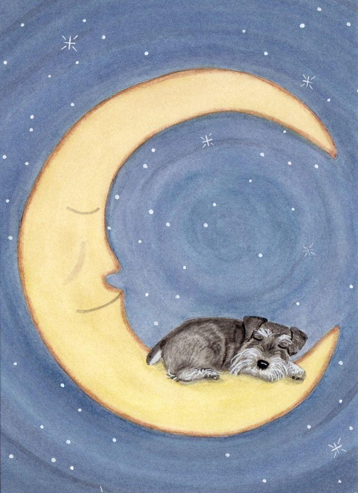 Schnauzer sleeping on Moon (uncropped ears) / Lynch signed folk art print. $12.99, via Etsy.