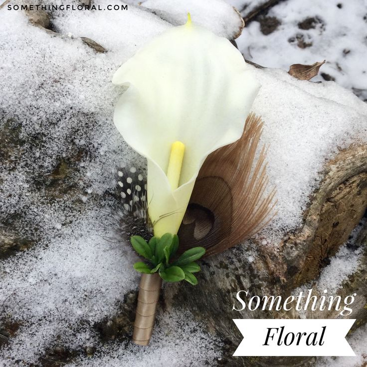 Realistic, artificial mini calla lily and peacock feather boutonniere in shades of white champagne, sand, tan, taupe, and brown. Modern elegance — Love it for a wedding, prom, or homecoming boutonniere. #feather #boutonniere #buttonhole #peacock #guinea