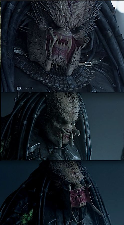 alien vs predator | Tumblr