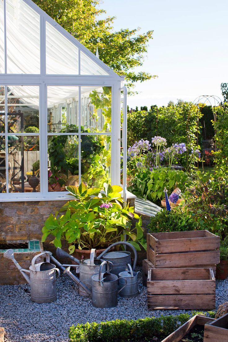 Drömmen om ett orangeri | Sköna hem