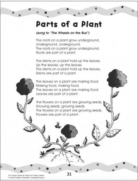 Plant poems - 101 Science Poems & Songs For Young Learners ...