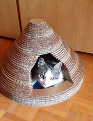 Build A Cardboard Cat House | Guidecentral