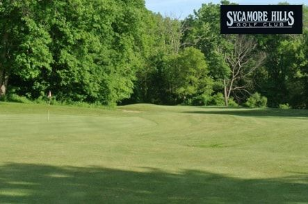 $8 for 9 Holes with Cart at Sycamore Hills Golf Course in Norwalk near Sandusky ($17 Value. Good Any Day, Any Time until June 15, 2017!)