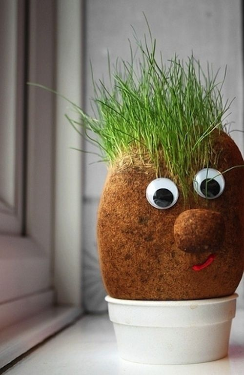 Grass Heads | 12 Crafts You Made As A Kid That You Would Totally Use As A Grown-Up
