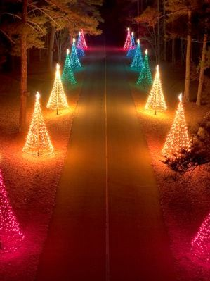 Callaway Garden Christmas Lights