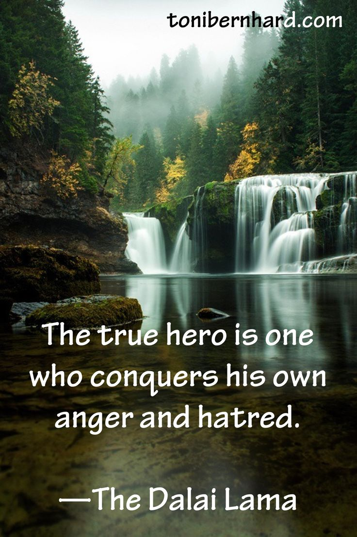 The true hero is one who conquers his own anger and hatred —The Dalai Lama