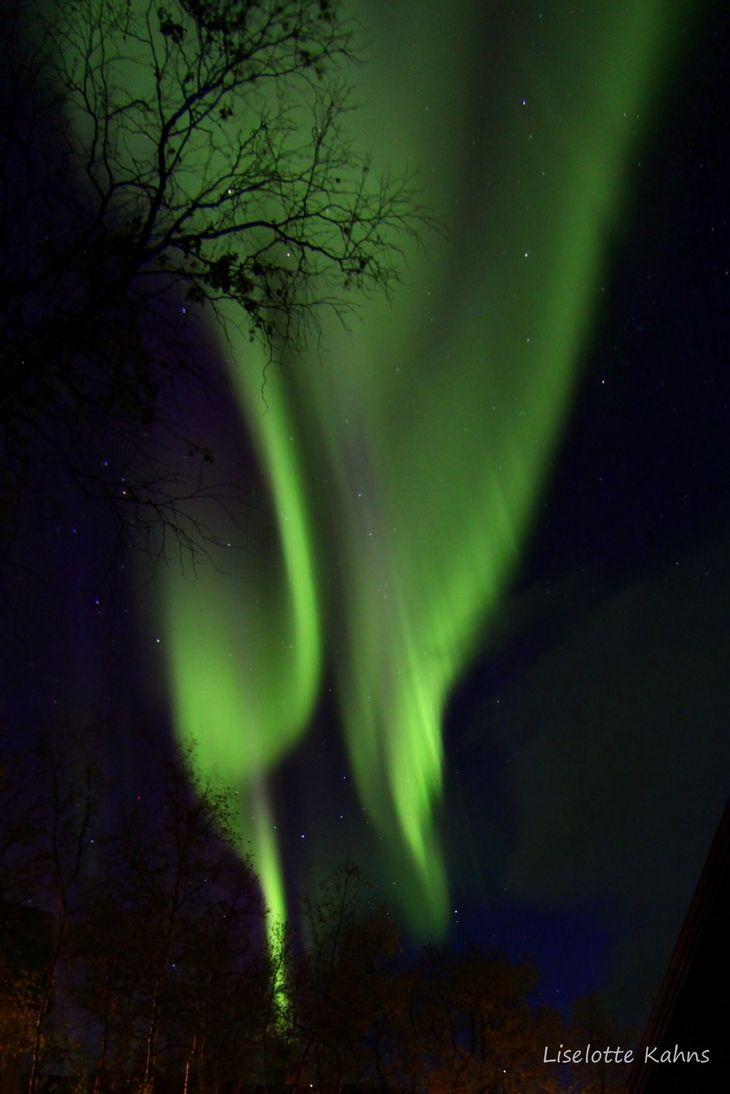 Northern Lights - Abisko NP, Norrbotten, Sweden