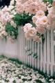 Divine Picket Fence in Bloom