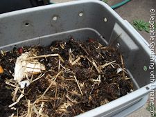 Homemade Worm Bin from a Rubbermaid Tub