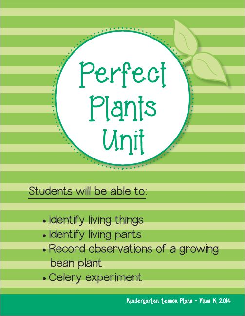 10 Best Kindergarten Lesson Plans Images On Pinterest | Lesson