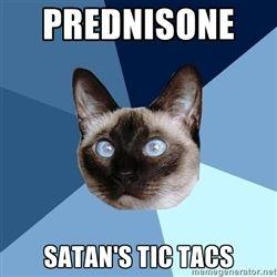 Chronic Illness Cat - Prednisone Satan's Tic Tacs