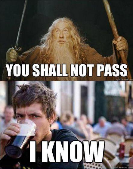 Should i study law yahoo
