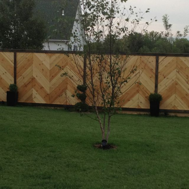 Cool chevron privacy fence fence ideas pinterest for Cool fence ideas