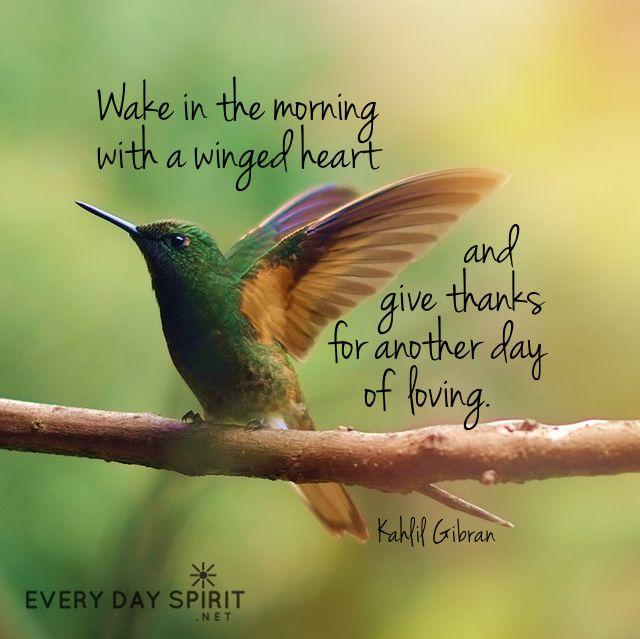 Best 20+ Hummingbird Quotes Ideas On Pinterest