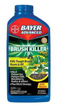 Weed Control : Bayer Advanced Brush Killer Plus. Combine with Round Up for effective eradication of bushkiller vine.