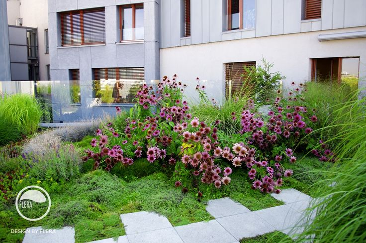 #landcape #architecture #garden #flower #rooftop #path