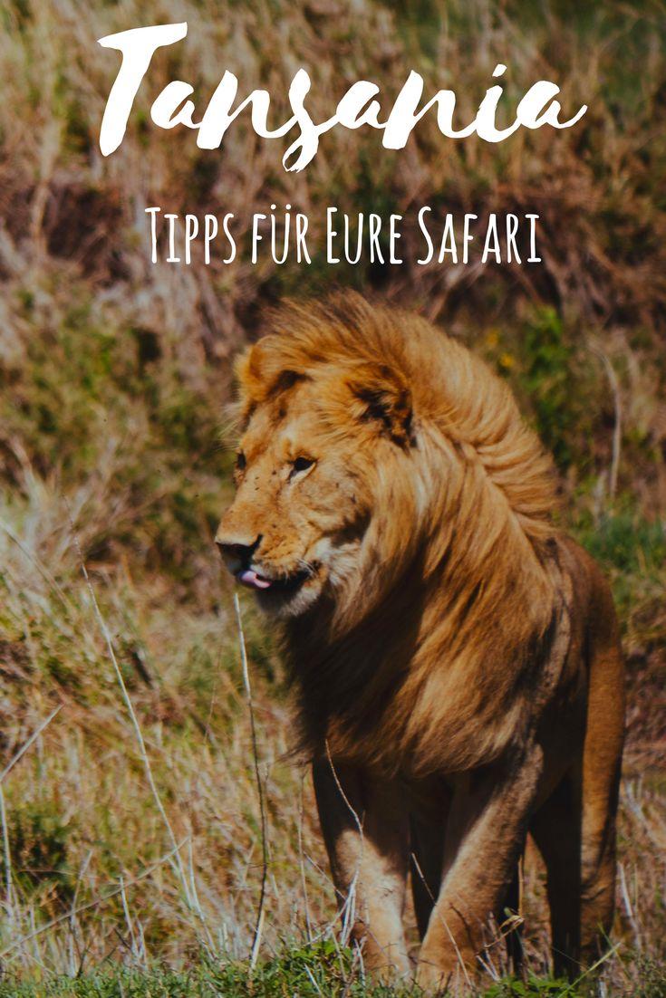 Um Euch die Planung eurer Safari in Tansania zu erleichtern, wollen wir nun unsere Erfahrungen mit Euch teilen und haben Euch die wichtigsten Tipps zusammengefasst. Wir geben Euch Infos über die Ausrüstung, der Safarikleidung, den Nationalparks, den Kosten und noch vieles mehr.