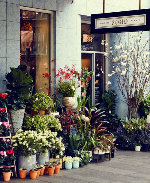 I love this florist! — Poho Flowers