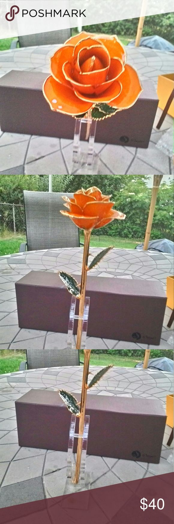 """Daya: 24k Gold Plated Dipped Rose Beautiful, long stem orange rose dipped in 24k gold plated. Eternal display of passion, gratitude, and/or enthusiasm is the Orange rose's meaning. The symbol brings invigorating energy as a special token. Comes in it's original box. Measures: 13""""x4""""x4"""" Daya Other"""