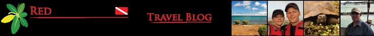 Red Mangrove Galapagos Travel Blog