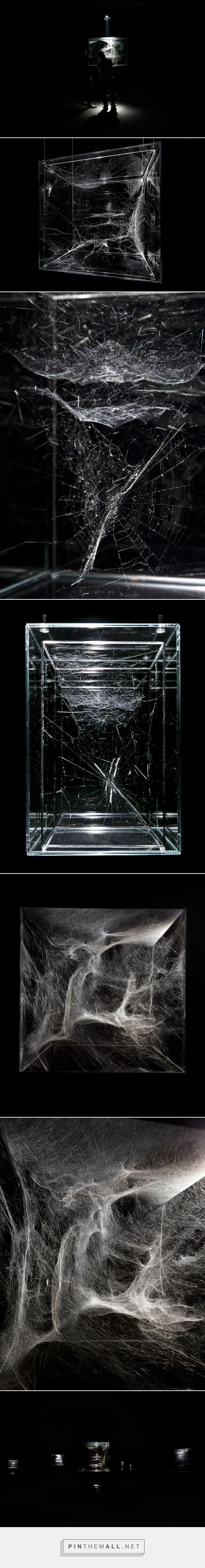 Tomás Saraceno's Spider Art Collaboration - created via http://pinthemall.net