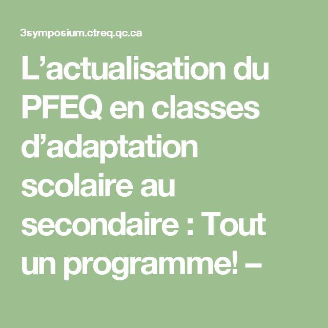 L'actualisation du PFEQ en classes d'adaptation scolaire au secondaire : Tout un programme! –