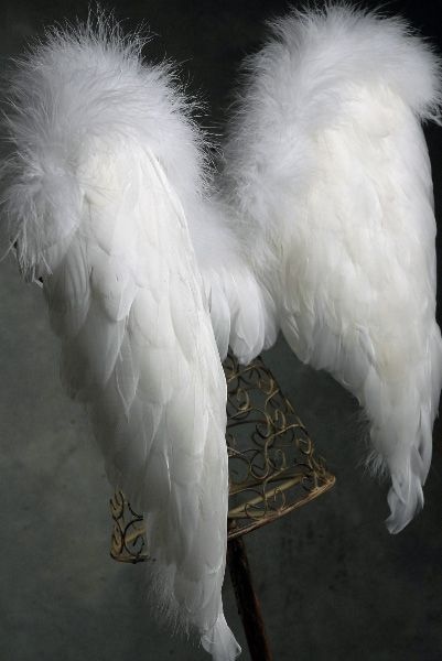 White Goose and Marabou Ostrich Feather Angel Wings (Hand Crafted)