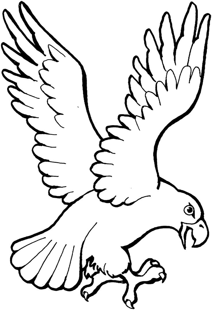 Patriotic eagle coloring pages - Eagle Landing Coloring Page