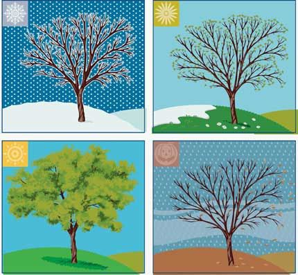 The Four Seasons - Geography For Kids - By KidsGeo.com